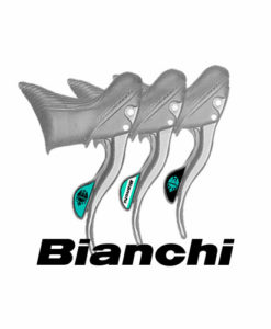Bianchi campagnolo Stickers